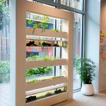 bureaux openspace espace de travail innovation aquaponie agriculture intérieur poisson plantes comestibles potager bien-être au travail