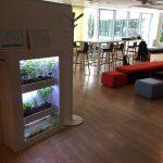 aquaponie openspace espace de travail potager urbain agriculture indoor