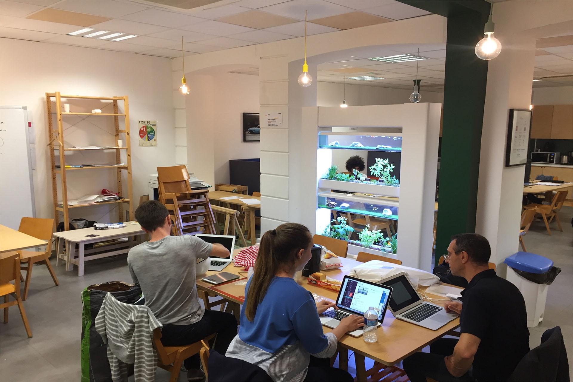 harmonia aura écosystème espace de travail openspace