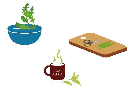 Consommez les plantes de votre Baromate !