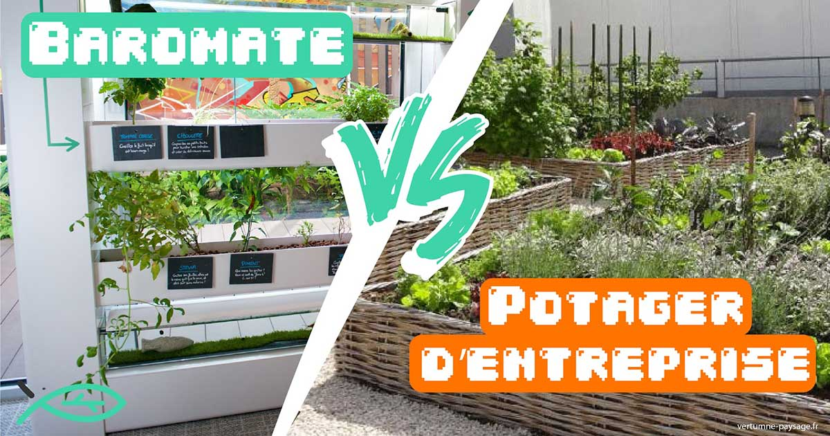 Aura et Corporate Garden vos solutions pour jardiner en entreprise
