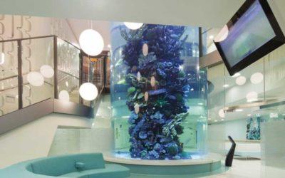 Le design biophilique en centre hospitalier, ça marche !