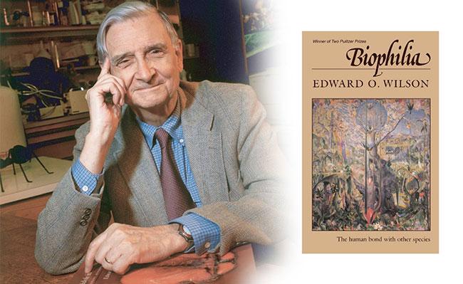Biophilia ouvrage de Edward O. Wilson